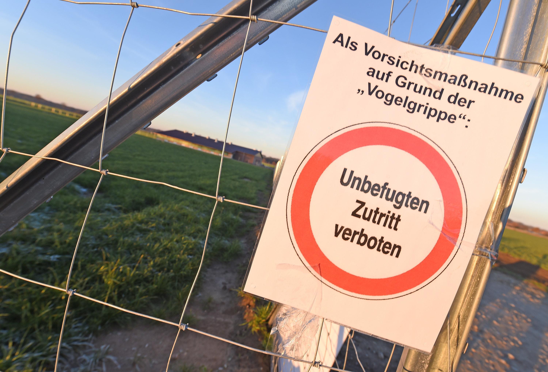 4b942233da9e http   www.merkur-online.de bayern plastiktuete-loest-verkehrsunfall ...